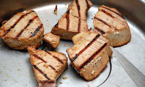 Grillede tunbøffer med nudelsalat