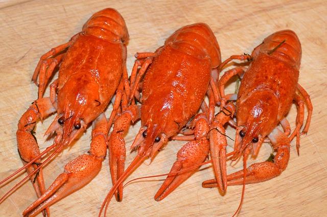 e03cb90b2af21c3e81584d04ee44408be273e4d119b9194990f8_640_lobster